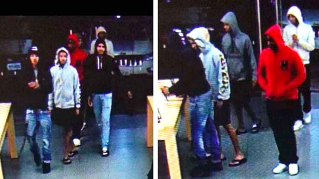 apple store thieves pictured