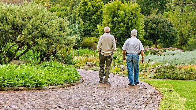 Two older men walking