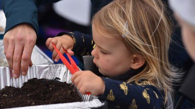 """Eva Lorton, 2, of North Park tries her hand at picking up """"bird food"""" with a tweezers, which mimics a bird's beak."""