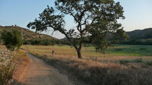Rural lane in Valley Center