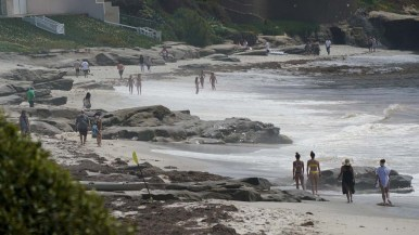 La Jolla beaches were popular Monday as restrictions on beach access were modified.