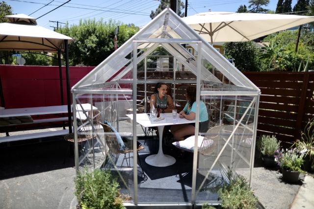 Greenhouse dining pod