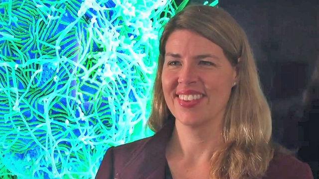 Dr. Erica Ollmann Saphire