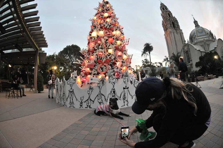 Kerri Ewing of Tierrasanta snaps a shot of her dog, Sugar, a pitbull mix in front of the lighted tree at The Old Globe in Balboa Park.