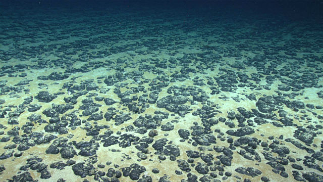 Manganese modules on the sea floor
