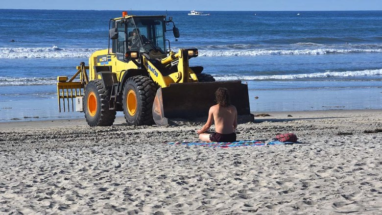 A bulldozer driver scoops up sand to create berms around the tree while a beachgoer continues his meditation.