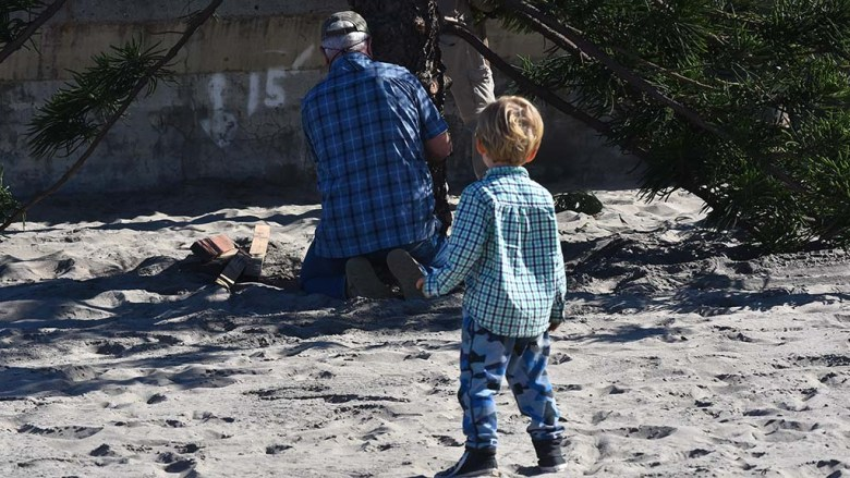 A young boy checks out the work of Ocean Beach volunteer Larry Thayer, who put in shims to stabilize the tree.