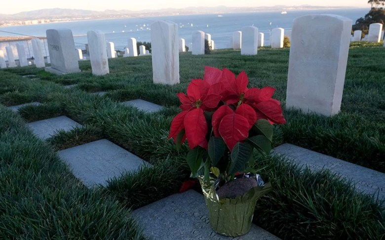A poinsettia plant is placed at a grave. Wreaths and holiday flowers decorated graves at Fort Rosecrans National Cemetery.