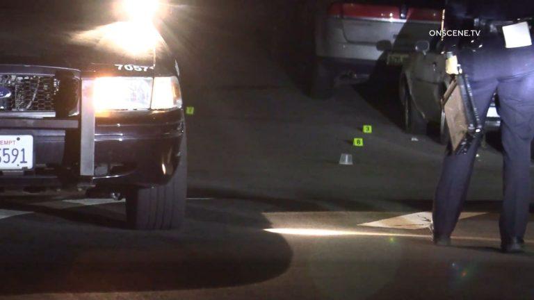 Lincoln Park Homicide