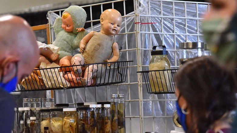 A creepy baby doll overlooks customers at one of 70 booths at the Oddities and Curiosities Fair in Del Mar.