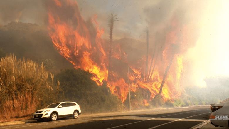 Carlsbad Brush Fire