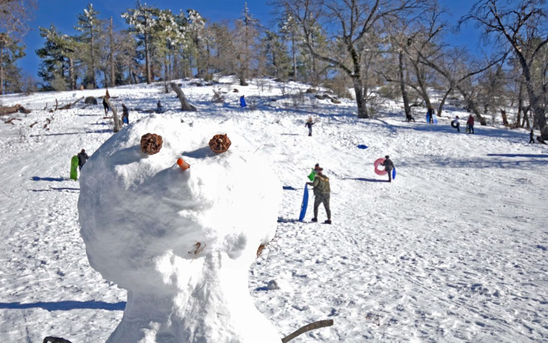 Snow people popped up in the Mt. Laguna Recreation area in addition to the two-legged sledding type.