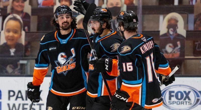 American Hockey League NHL Ducks