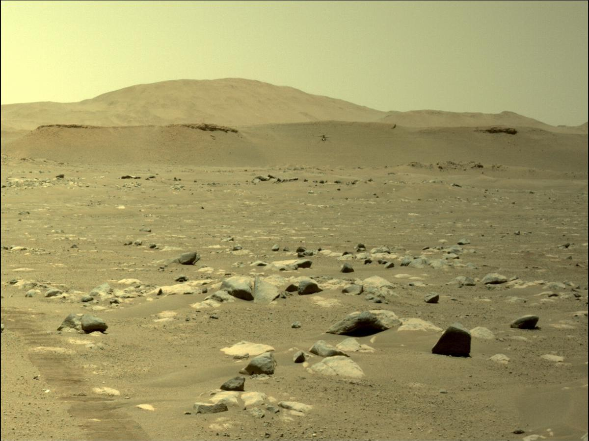 View of Martian surface