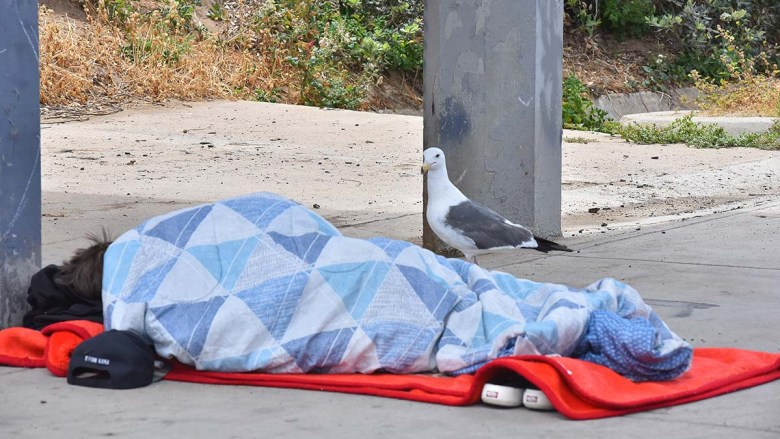 A homeless man sleeps below the entrance to the Ocean Beach Pier. Photo by Chris Stone