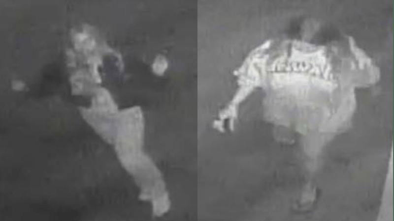 Surveillance photos of vandalism suspects