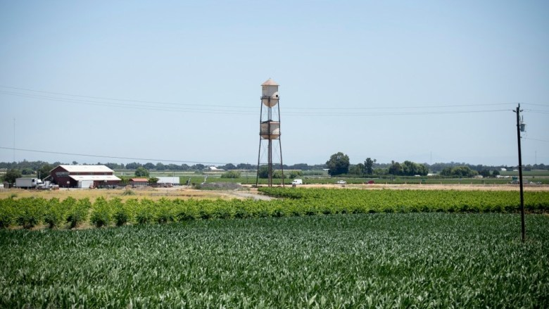 Water tower in the Delta