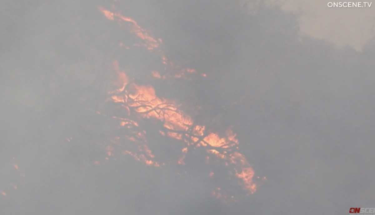Wildfire and CalFire