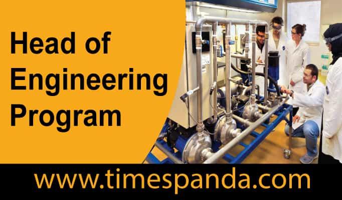 Head of Engineering Program