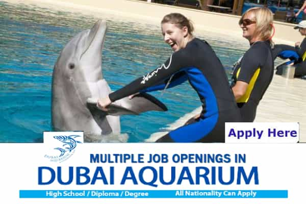 Aquarium of the Pacific Jobs
