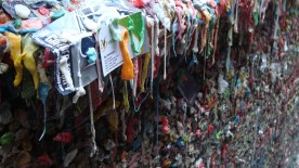 The infamous gum wall in Seattle, WA. I can still smell the stale juicy fruit.!