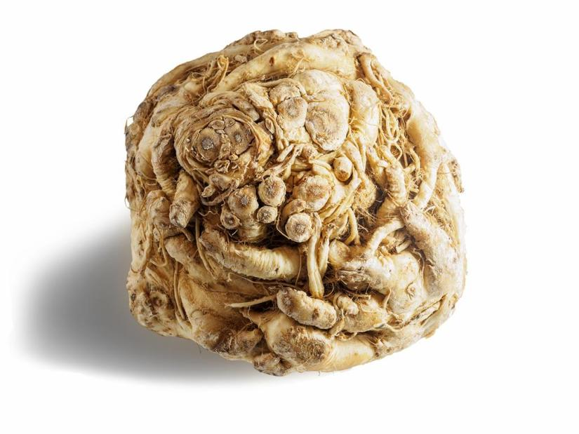 Head of celery root (celeriac) i