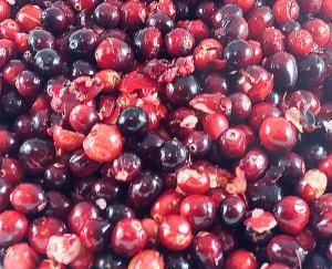 Cranberries popped