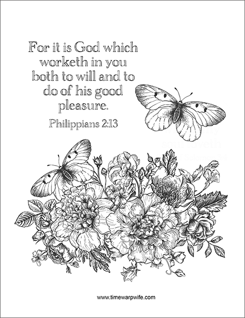 Bible Study – Philippians – Week 3