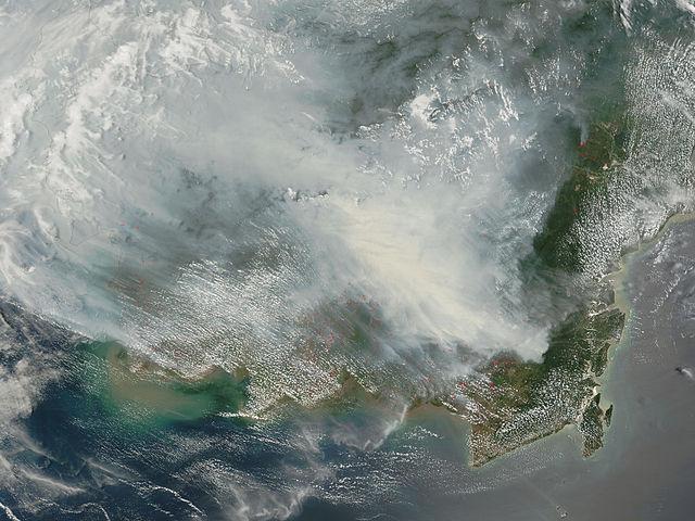 Borneo_fires