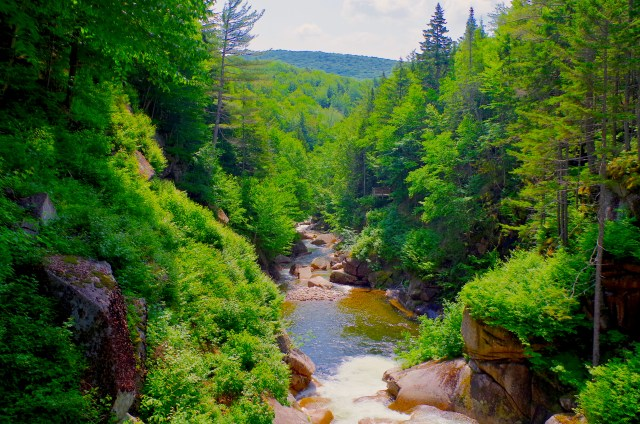A stream flows downhill in New Hampshire.
