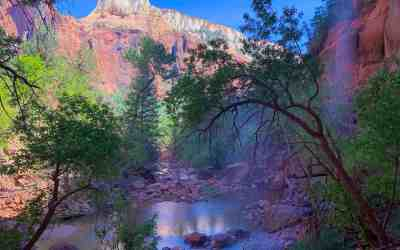 Zion National Park Itinerary
