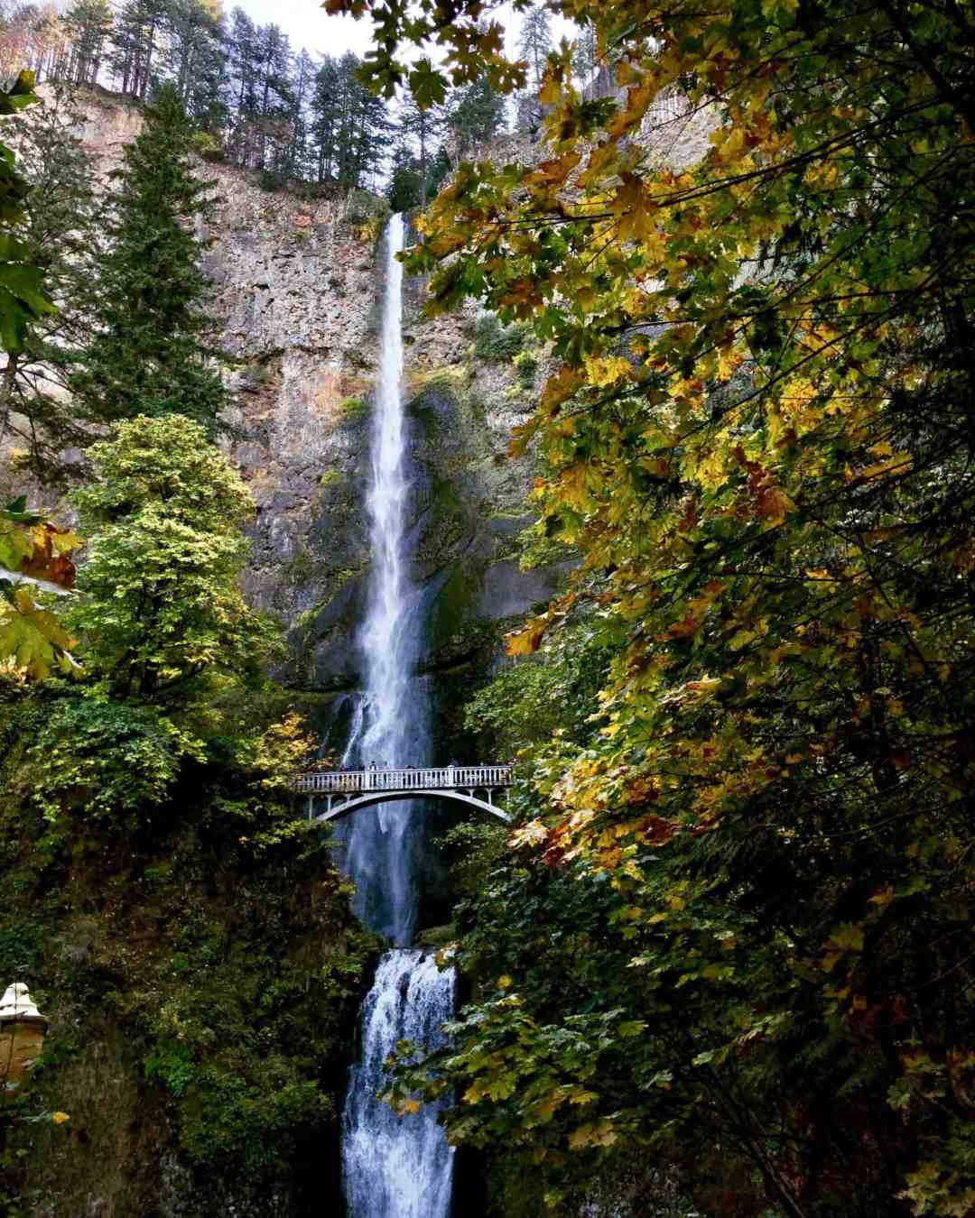 Multnomah Falls in the autumn