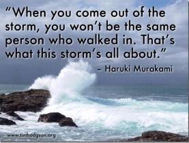 storm_thumb.jpg