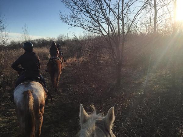 Riding Through My Winter Funk
