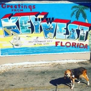 Key West with Jaxson