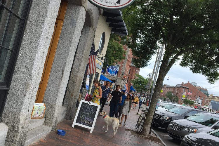 Dog Days of Summer in Maine
