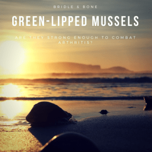 Green-lipped mussels