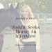 Saddle Seeks Horse Interview