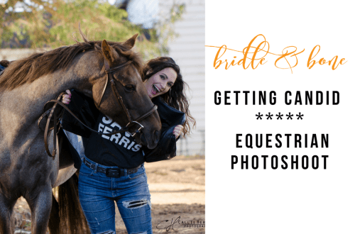 Equestrian Photoshoot