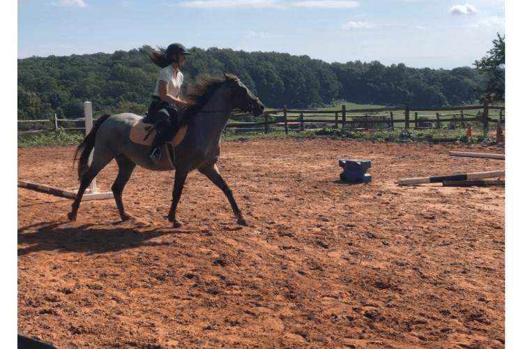 Pretty vs Effective Riding
