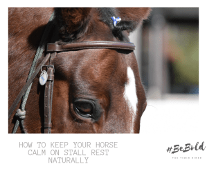 Horse Calm Stall Rest