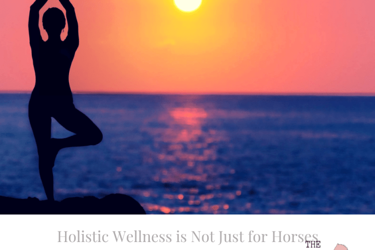 Holistic Wellness Humans