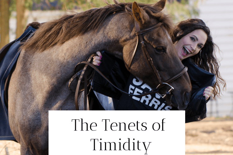 Tenets of Timidity