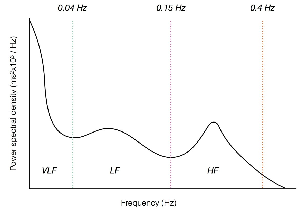 Spectral components of heart rate variability. Power in different frequency bands corresponds to the function of the autonomic nervous system. VLF, very low frequency; LF, low frequency; HF, high frequency.