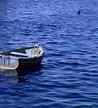 A boat adrift