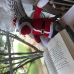 Sock Monkey reading