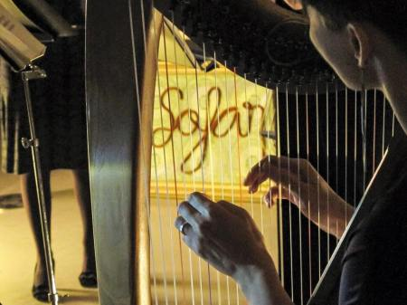 Iceland Loft Hostel harp music