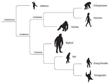 Monsters « Tim Kane Books « Page 2