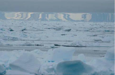 Miraging horizon over sea ice © Carl Safina, Blue Ocean Institute http://blueocean.org/home