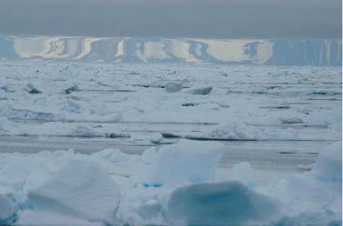 Miraging horizon over sea ice © Carl Safina, Blue Ocean Institute http://blueocean.org/home
